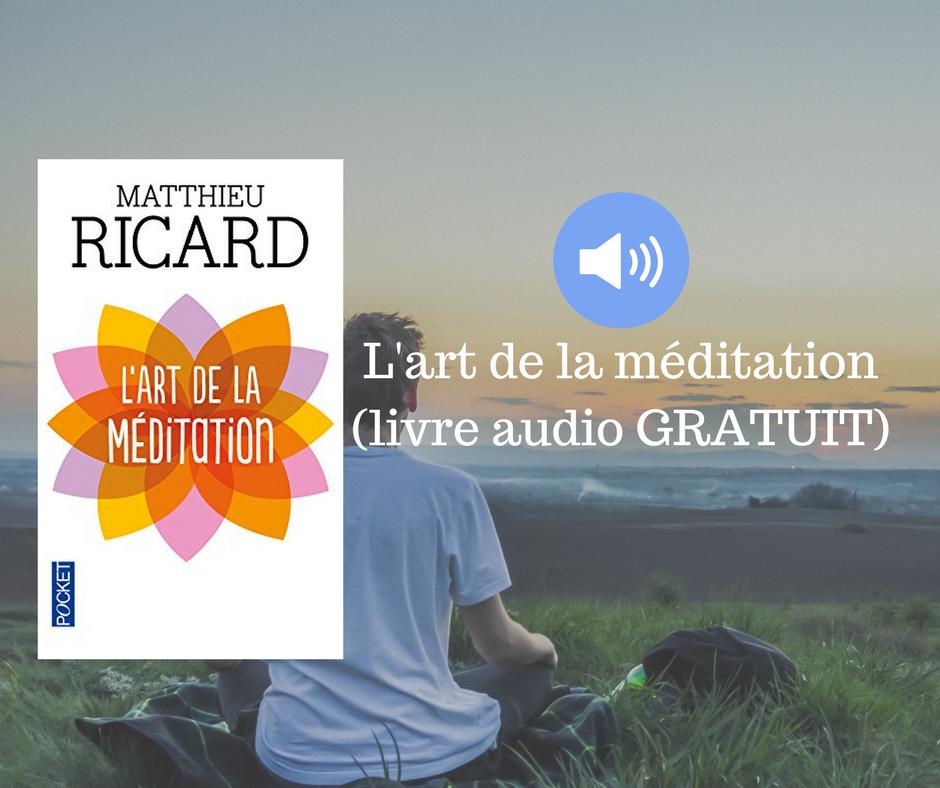 L Art De La Meditation Livre Audio Gratuit Etre Spirituel